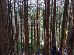 木の皮を数人で上まで向いています