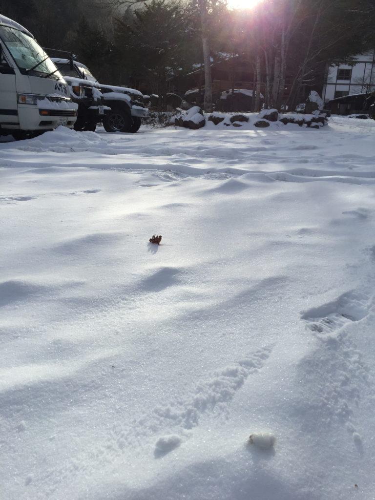 八丁湯の前の雪