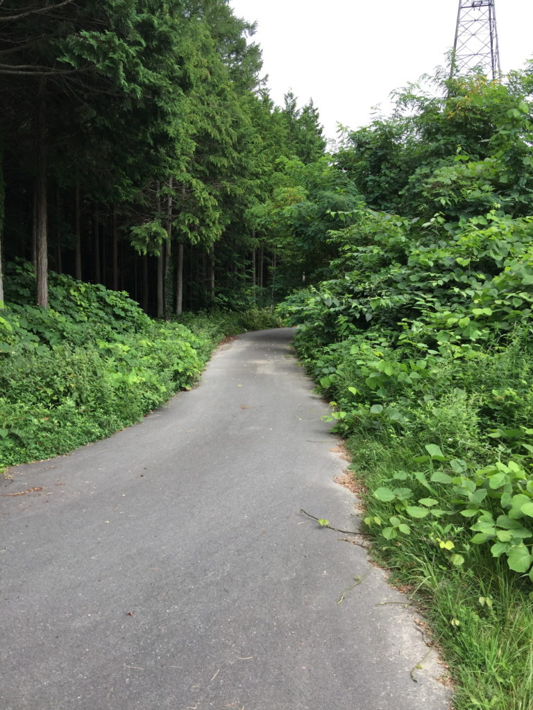 駒ヶ根の奥へと続く道2