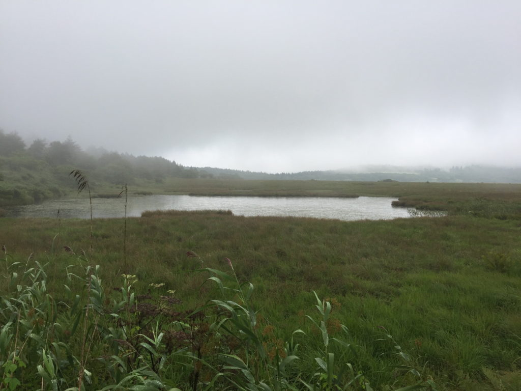 八島湿原の池と風景