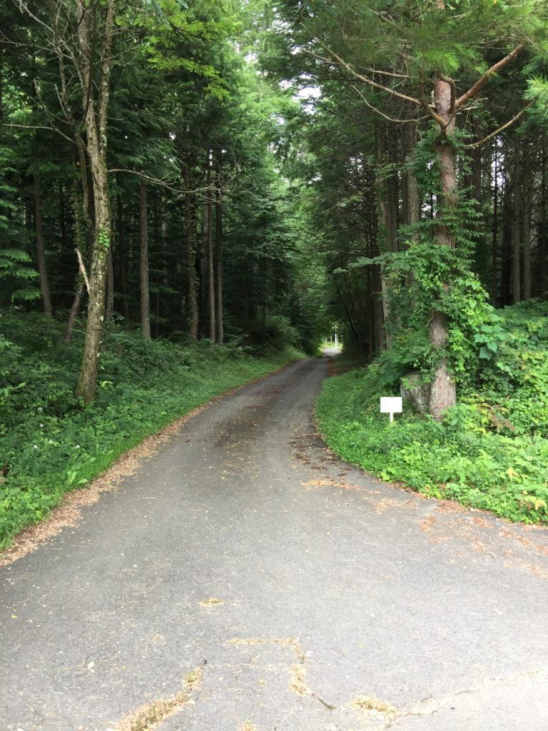 駒ヶ根の奥へと続く道1