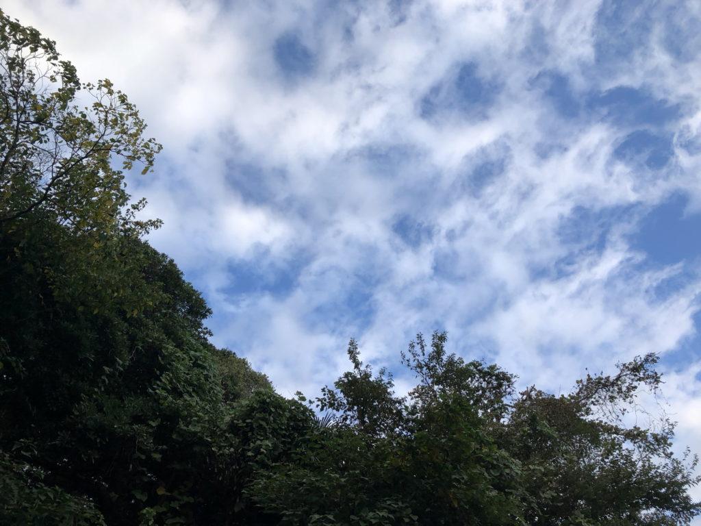 スカイブルーの空