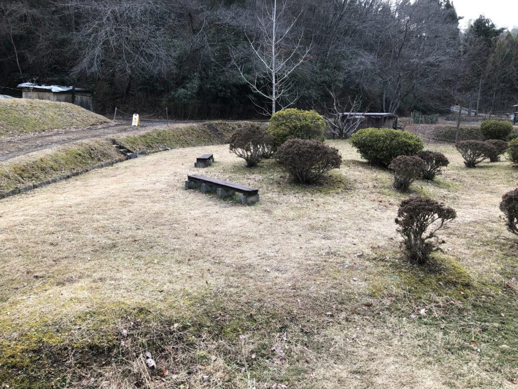 京都ダンマバーヌの庭その1