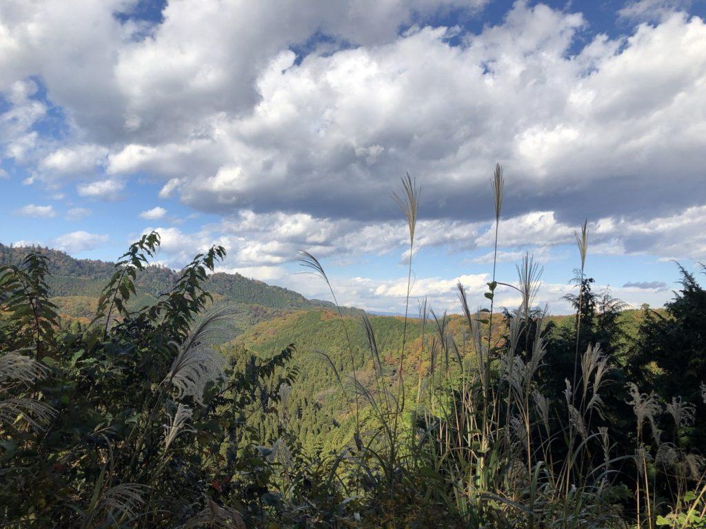 山頂から見渡す向かいの山
