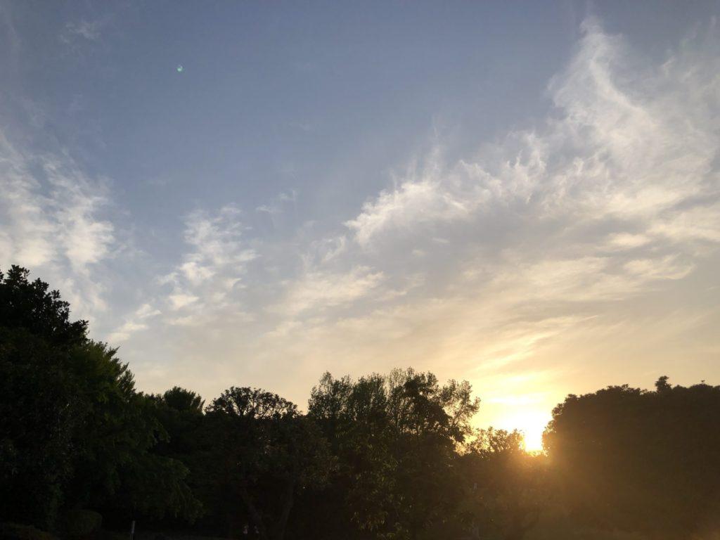 公園に沈む夕日